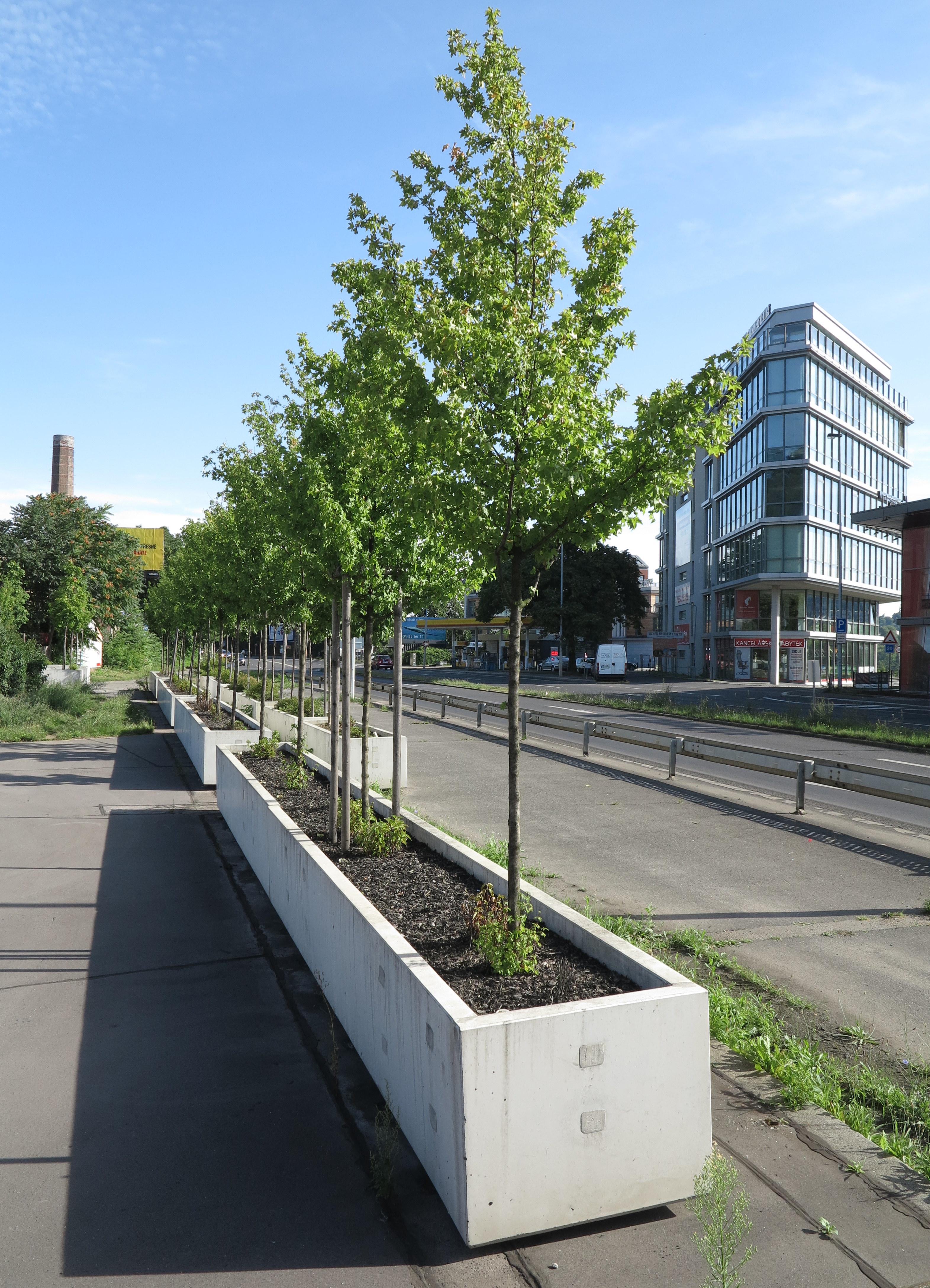 betonove-kvetinace-jsou-prozatim-vsechny-zamluveny
